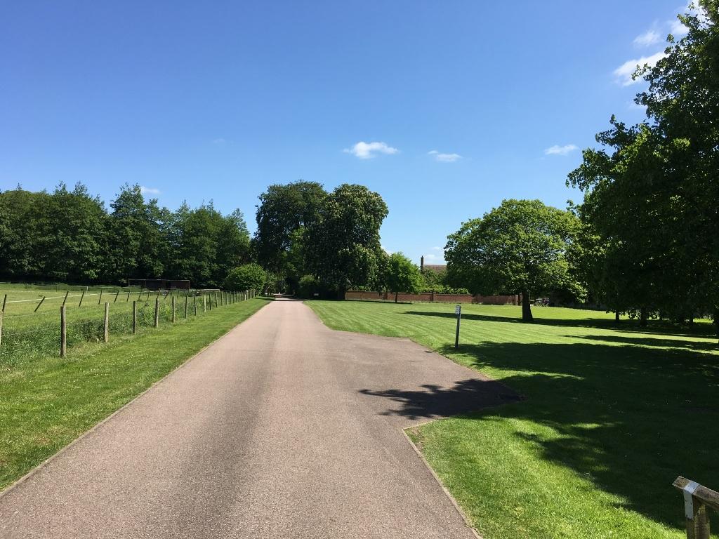 Grounds Maintenance Hertfordshire (2)